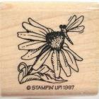 Mounted Rubber Stamp ~ Blackeyed Susan with Dragonfly