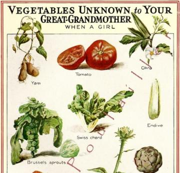1935 Veggies Unknown To Great-Grandma, A Kitchen Worthy Litho