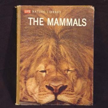 The Mammals. Lavishly Illustrated Life Book. Perfect For Altered Art, Mixed Media Jewelry And Collage