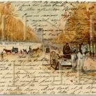 FRENCH SCRIPT Paris  Street Scene Horse Buggy Tuileries AUTUMN colors Antique Postcard DIGITAL SCAN