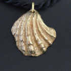 Bronze Shell - Small