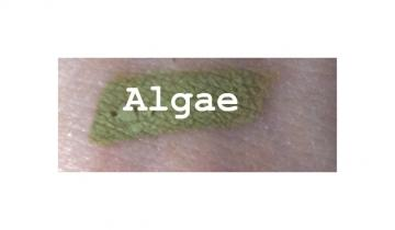 **Algae** Matte shadow