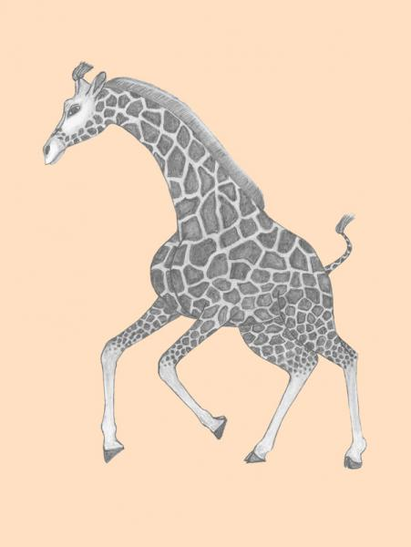 Galleries baby giraffe drawing baby giraffe coloring pages baby - Gallery For Gt Baby Giraffe Pencil Drawing