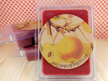 Apple Cinnamon Soy Wax Melt, Soy Wax Tart For Wax Warmers
