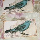 10 blue bird Printed cards Tags - Use for Thank you Notes, Coupons To Your Customers, Scrapbooking, Wedding and more