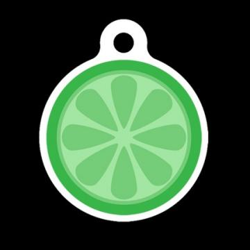 Lime Slice (Also comes in Lemon or Orange) Pet Tag, Luggage Tag, Child ID Tag