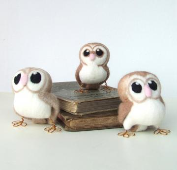 Tweet Hoot  Little White and Brown Barn Owl