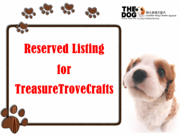 Reserved Listing for TreasureTroveCrafts