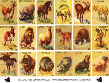 Animals  Collage Sheet #2