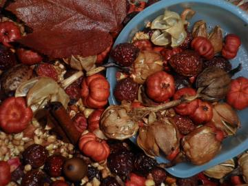 Autumn Hips-n-Pods Primitive Chunky Fixins 1 Cup of Rosehips & Pods potpourri