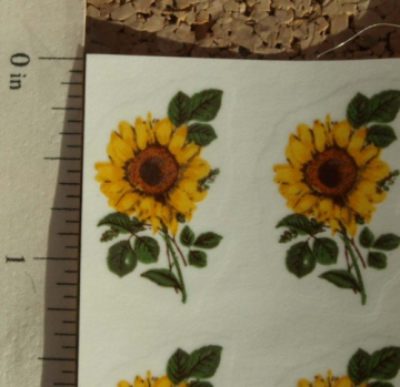Sunflower Small Ceramic Waterslide Decal -D9-20