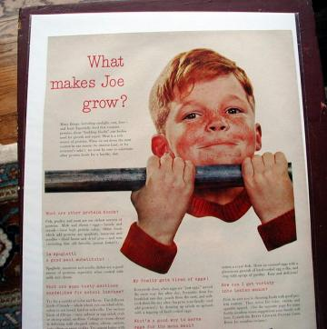 1953 Life Magazine Ad-What Makes Joe Grow? Betty Crocker