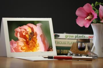 Photo Note Card - Honeybee Heaven