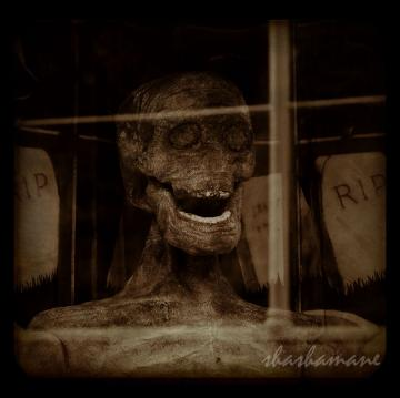 "Zombie is amused 5 x 5"" photography Halloween art print"