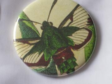 Pin Back Button - Vintage Moth