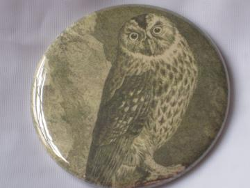 Pin Back Button -  Vintage Owl