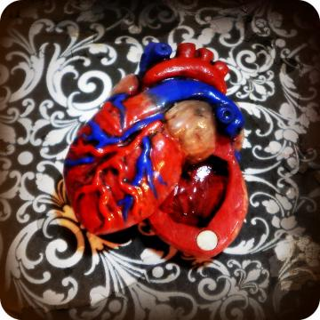 Anatomical Heart Locket FULL COLOR -swivels to open