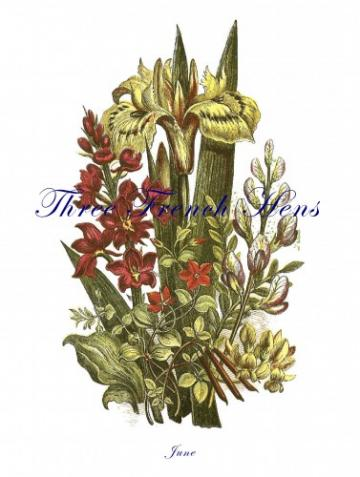 Victorian June Bouquet Stationery Note Flats, Set of 5