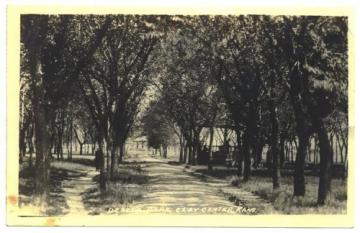 Clay Center Kansas Postcard Dexter Park Vintage 1910s RPPC Real Photo