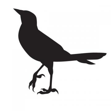 Bird Vinyl Decal Design 7