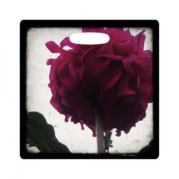Luggage Tag - Dahlia - 3.5 Inch Square Plastic Bag ID Tag