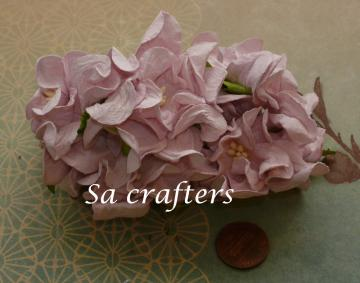 Pale Pink Gardenia 2-1/4x2-1/4inches-25 flowers