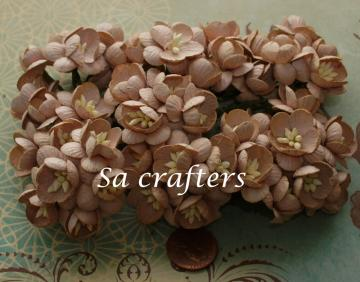 1inch Cherry Blossom paper flowers Light Brown color-50 Flowers