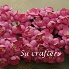 1inch Cherry Blossom paper flowers Fushsia color-50 Flowers