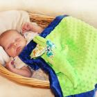 Green Alligator Lovey Blanket, Satin, Baby Blanket, Stuffed Animal, Baby Toy - Customize Color - Monogramming Available