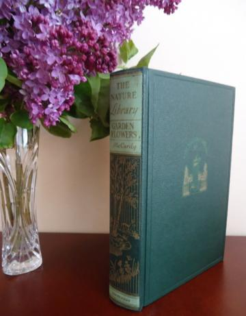 1926 Garden Flowers Book Nature Library Robert McCurdy