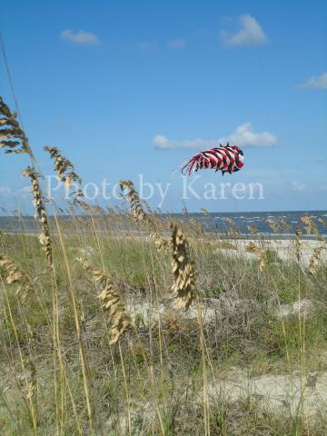 Weed Kite 5 x 7 Original Photograph, other sizes available