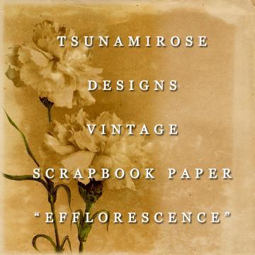 6X6 Vintage Digital Printable Scrapbook Paper- Efflorescence