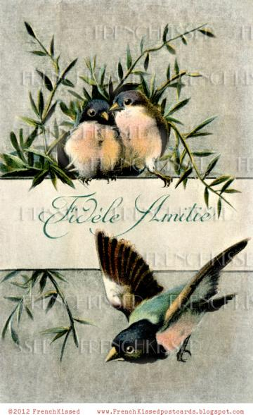 DIGITAL Scan Peach Breasted BIRDS Antique French Script FRIENDSHIP Fidele Amitie postcard photo download