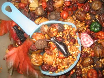 Autumn HARVEST Hips-n-Pods Primitive Chunky Fixins 1 Cup of Rosehips & Pods potpourri  Strong Cornucopia FALL scent