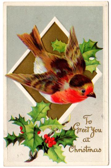 Antique Christmas Postcard Embossed 1910s Greeting Large Bird Holly Berries