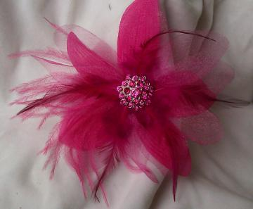 Bright Flower and Feather Clips