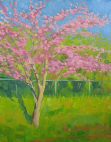 Redbud Display - Original oil