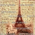 EIFFEL Tower Expo 1900 French Script All Over PARIS Souvenir Antique postcard DIGITAL Scan