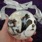 2 Faces Hand Painted Pet Portrait Ornament!