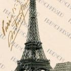 DIGITAL Scan Eiffel Tower PARIS 1919 French postcard