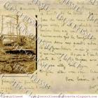 SEPIA Forest Photo FRENCH script Antique Postcard DIGITAL SCAN Autumn Collage