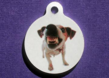 Custom OOAK Photo Pet ID Tag