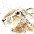 "<div align=""center""><h1><strong>""Hare Print from Original Pen, Ink, Watercolor"" by <a href=""http://www.zibbet.com/wrensroost"">wrensroost</a></strong><br />$25.00<span> USD </span> </h1><a href=""http://www.zibbet.com/wrensroost/artwork?artworkId=1128920""> Click to view more details </a></div>"