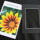 Flower Photo all occassion Greeting card and gift