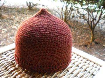 Juvenescence Hat in Spice