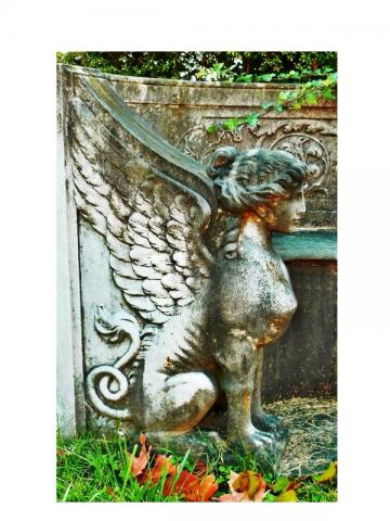 Gothic Dark Art, Metamorphosis, Sphinx Print, Victorian Era, Virginia Cemetery, Winged Woman 5x7 Fantasy Fine Art Print, Taphophile, Mythology